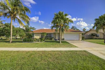 Wellington Single Family Home For Sale: 11500 Turnstone Drive