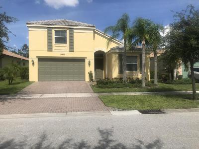 Port Saint Lucie Single Family Home For Sale: 11252 SW Kingslake Circle