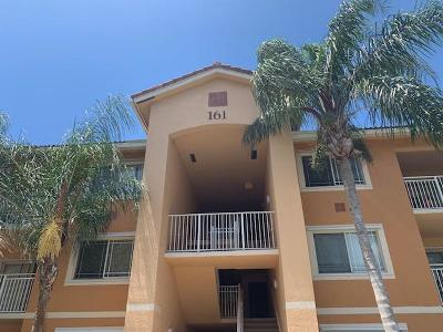 Condo For Sale: 161 SW Palm Drive #207