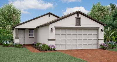 Fort Pierce Single Family Home For Sale: 4228 Birkdale Drive