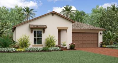 Fort Pierce Single Family Home For Sale: 4230 Birkdale Drive