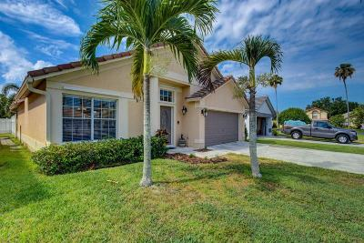 Wellington Single Family Home For Sale: 12694 Coral Breeze Drive