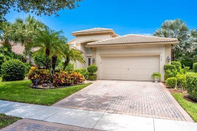 Boynton Beach Single Family Home For Sale: 6908 Molakai Circle