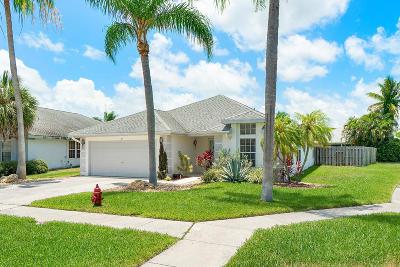 Boynton Beach Single Family Home For Sale: 18 Heather Cove Drive