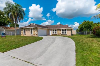 Royal Palm Beach Single Family Home For Sale: 298 La Mancha Avenue