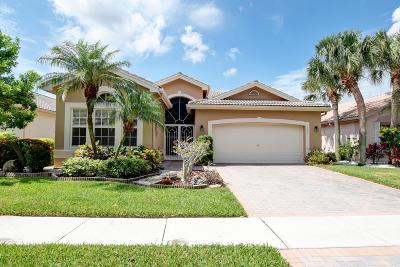 Boynton Beach Single Family Home For Sale: 7878 Stanza Street