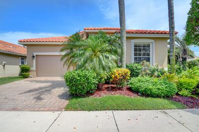 Boynton Beach Single Family Home For Sale: 7026 Haviland Circle