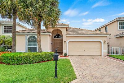 Lake Worth Single Family Home For Sale: 7166 Lake Island Drive