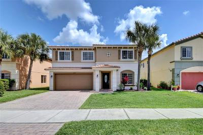 St Lucie County Single Family Home For Sale: 2029 SW Providence Place