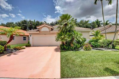 Boynton Beach Single Family Home For Sale: 9638 Harbour Lake Circle