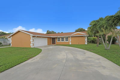 Jupiter Single Family Home For Sale: 408 Perry Avenue