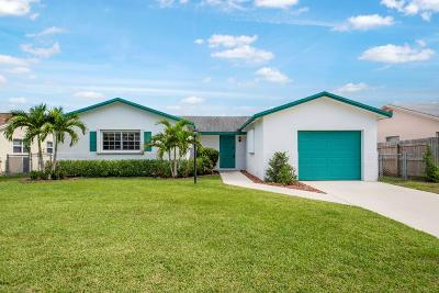 Boca Raton Single Family Home For Sale: 9004 SW 6th Street