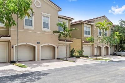 Condo Contingent: 4890 Bonsai Circle #106