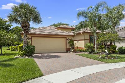 Boynton Beach Single Family Home For Sale: 8908 Agliana Circle
