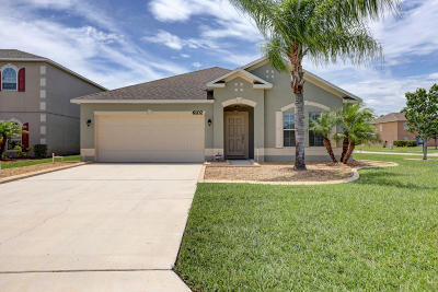 Port Saint Lucie Single Family Home For Sale: 6102 NW Wild Cotton Way