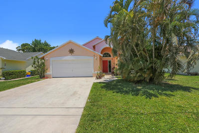 Jupiter Single Family Home For Sale: 6247 Ungerer Street
