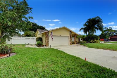 Royal Palm Beach Single Family Home For Sale: 184 Ponce De Leon Street
