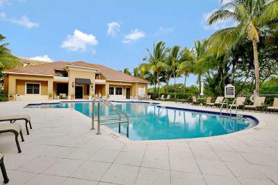 Palm Beach Gardens Rental For Rent: 4905 Midtown Lane #2102