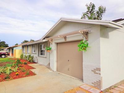 Jensen Beach Single Family Home For Sale: 1560 NE 24th Terrace