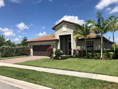 Lake Worth Single Family Home For Sale: 7211 Prudencia Drive