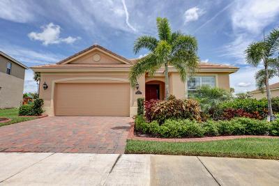 Port Saint Lucie Single Family Home For Sale: 11574 SW Rowena Street