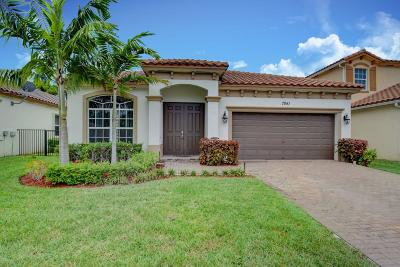 Lake Worth Single Family Home For Sale: 7841 Patriot Street