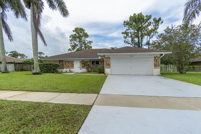 Royal Palm Beach Single Family Home For Sale: 156 Sunflower Circle
