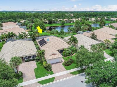 Palm Beach Gardens Single Family Home For Sale: 4603 Bontia Drive