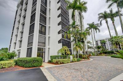 Boca Raton Condo For Sale: 1643 Bridgewood Drive #1643