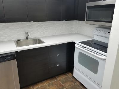 Coral Springs, Parkland, Coconut Creek, Deerfield Beach,  Boca Raton , Margate, Tamarac, Pompano Beach Rental For Rent: 602 NW 13th Street #0250