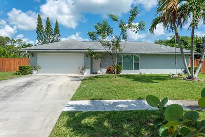 Royal Palm Beach Single Family Home For Sale: 122 Valencia Street