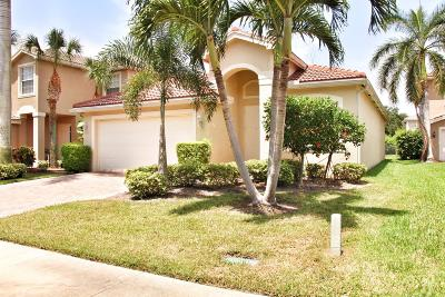 Boynton Beach Single Family Home For Sale: 7551 Topiary Avenue
