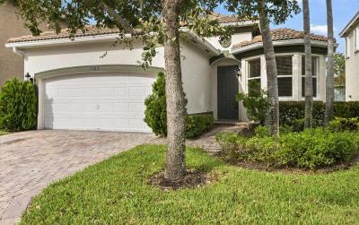 Riviera Beach Single Family Home For Sale: 1043 Center Stone Lane