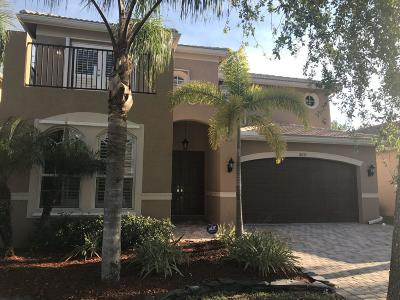 Boynton Beach Single Family Home For Sale: 8653 Breezy Hill Drive
