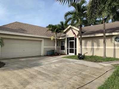 Boynton Beach Single Family Home For Sale: 9162 Patina Drive