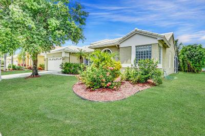 Boca Raton Single Family Home For Sale: 9580 Lake Serena Drive