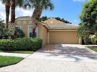 Boynton Beach Single Family Home For Sale: 7422 Granville Avenue
