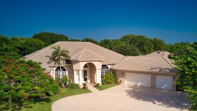 Palm Beach Gardens Single Family Home For Sale: 16545 74th Avenue