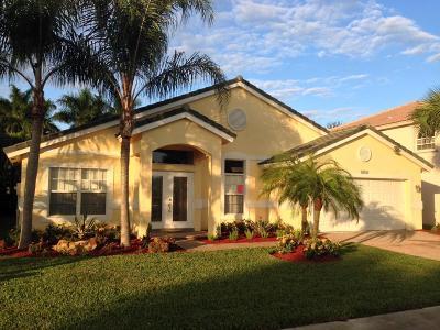 Wellington Single Family Home For Sale: 4074 Bahia Isle Circle