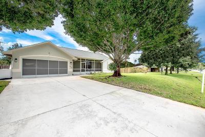 Port Saint Lucie Single Family Home For Sale: 473 SW Dolores Avenue