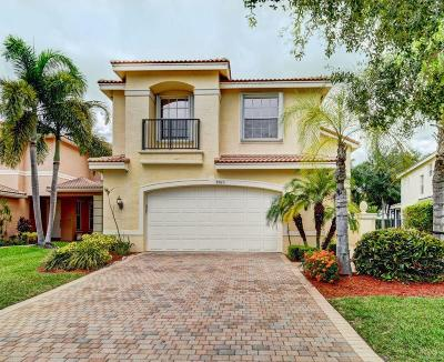 Boynton Beach Single Family Home For Sale: 8923 Briarwood Meadow Lane