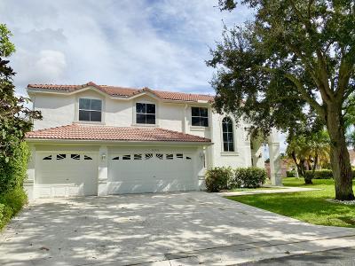 Boca Raton Single Family Home For Sale: 20252 Monteverdi Circle