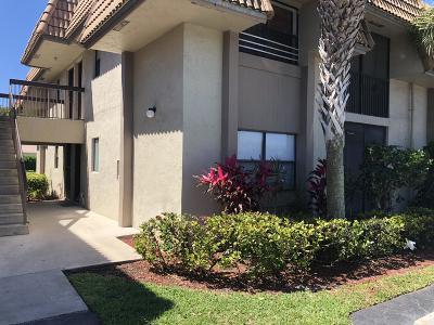 Coral Springs Rental For Rent: 10714 Royal Palm Boulevard #4-2