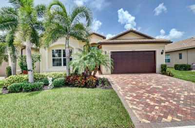 Boynton Beach Single Family Home For Sale: 8303 Cloud Peak Drive Drive