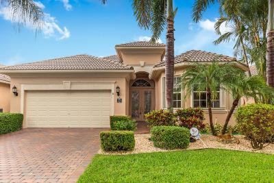 Boynton Beach Single Family Home For Sale: 7235 Veneto Drive