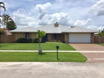 Royal Palm Beach Single Family Home For Sale: 117 Malaga Street