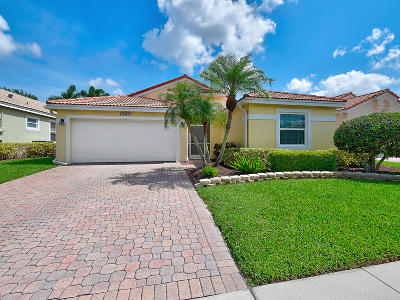 Boynton Beach Single Family Home Contingent: 6943 Camille Street