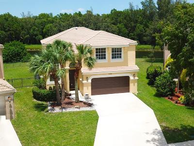 Royal Palm Beach Single Family Home For Sale: 1132 Oakwater Drive