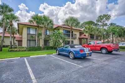 Palm Beach Gardens Condo For Sale: 1102 Duncan Circle #203