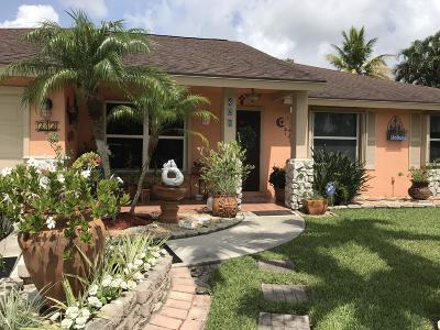 Royal Palm Beach Single Family Home For Sale: 343 Sandpiper Avenue